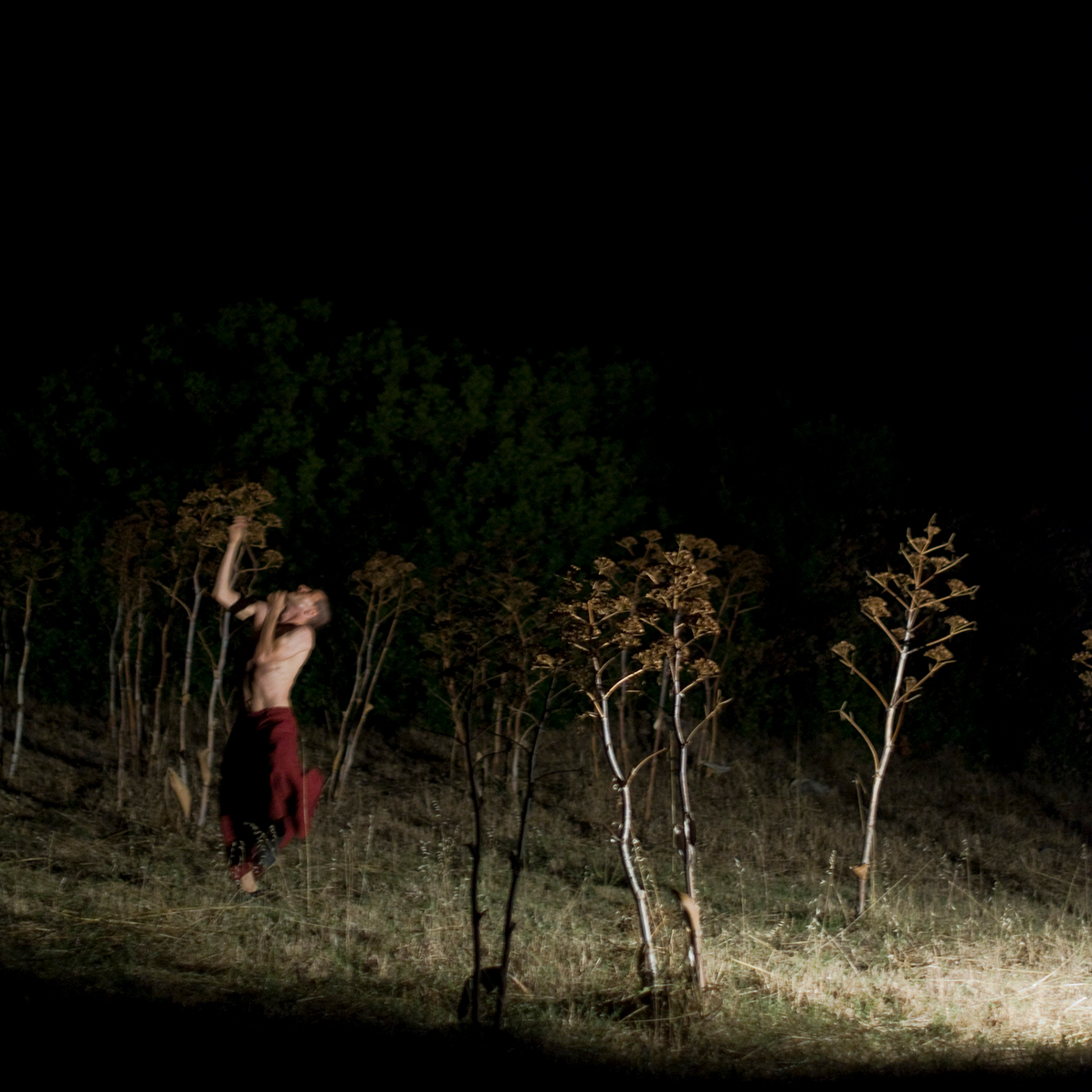 Il Corpo Nudo, 2011